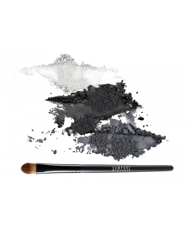 3 eye shadow set + professional eye shadow brush