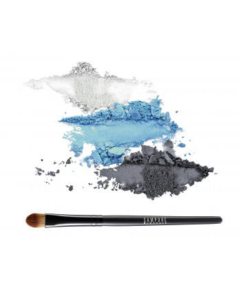 3 eye shadow set + professional eye shadow brush